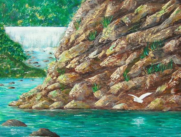 River Art Print featuring the painting Rio La Plata by Tony Rodriguez