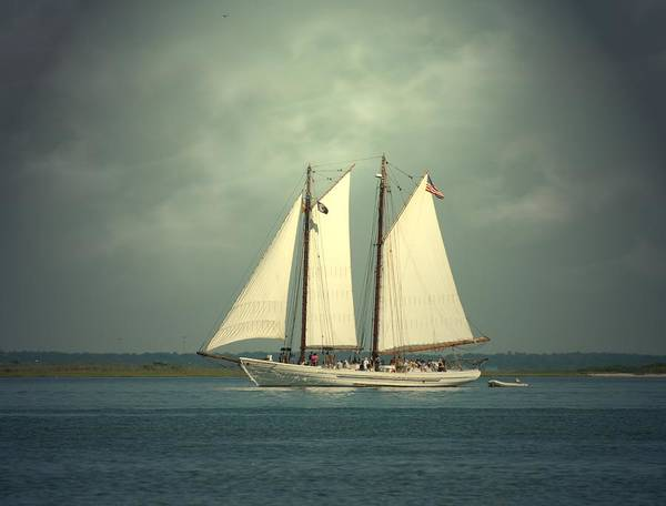 Sailing Ship Art Print featuring the photograph Schooner A. J. Meerwald 4 by Joyce StJames
