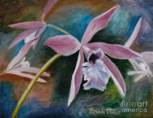Flower Art Print featuring the painting Sweet Orchid by Brenda Thour