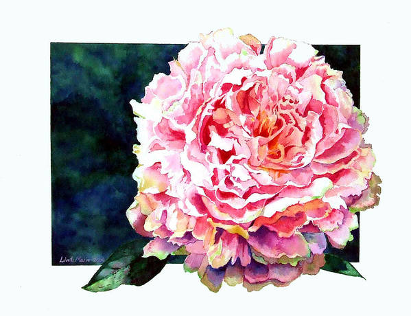Peony Art Print featuring the painting The Ant's Castle by Linda Marie Carroll