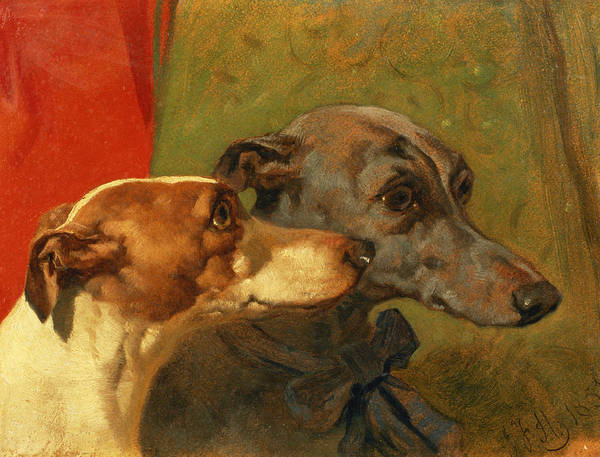 Greyhound; Dog; Ribbon; Bow; Dogs; Charlie; Pet; Racing; Levrier; Levriers Print featuring the painting The Greyhounds Charley And Jimmy In An Interior by John Frederick Herring Snr