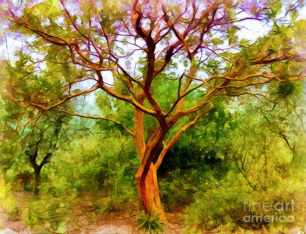 Tree Art Print featuring the photograph Tree At Kew Gardens by Judi Bagwell