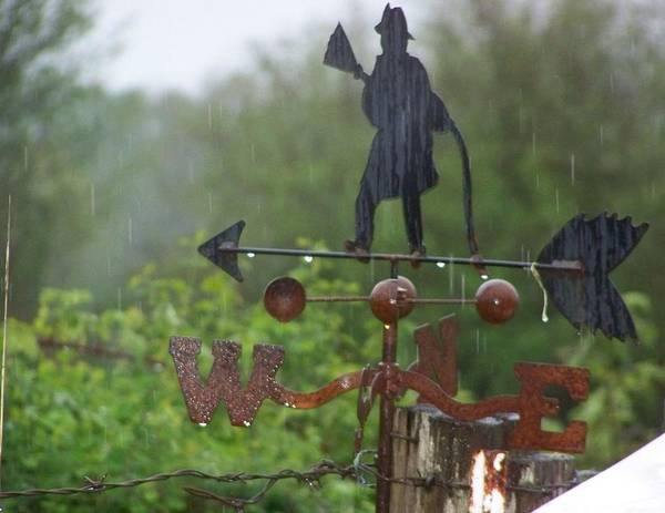 Digital Photography Art Print featuring the photograph Weather Vane In The Rain by Laurie Kidd