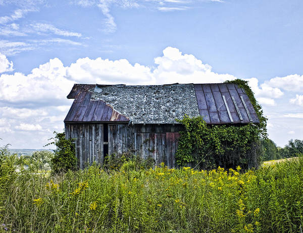 Landscape Art Print featuring the photograph Weatthered Barn by Pat Carosone