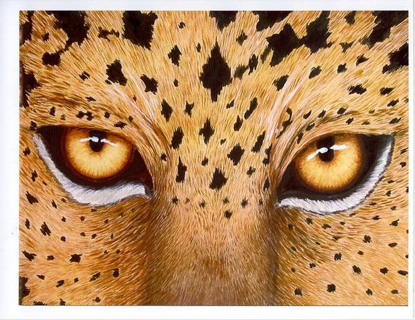 Animal Art Print featuring the painting Wild Eyes by Lorraine Foster