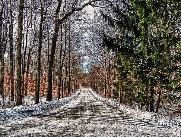 Cold Art Print featuring the photograph Winter Lane by Carol A Commins