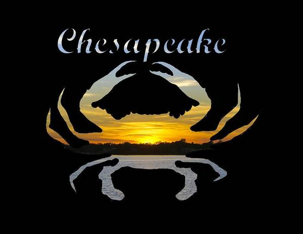 2d Art Print featuring the photograph Chesapeake by Brian Wallace