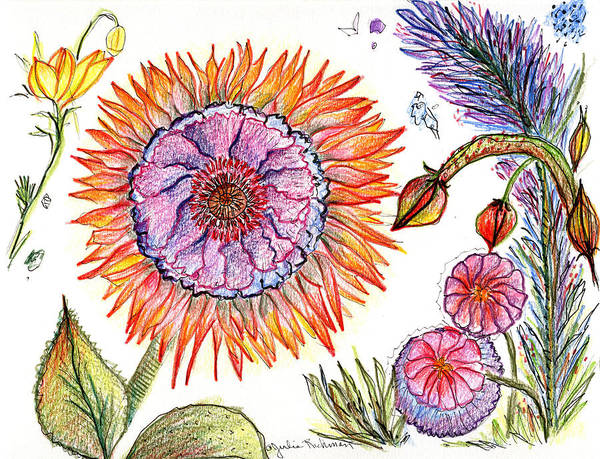Flowers Nature Botany Drawing Julie Richman Flora Pencil Art Print featuring the painting Botanical Flower-50 by Julie Richman
