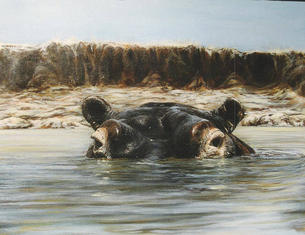 Wildlife Art Print featuring the painting Hippo by Steve Greco