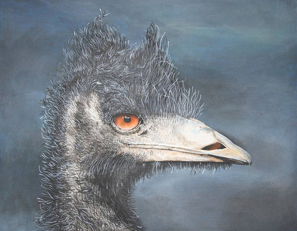 Emu Portrait Art Print featuring the painting Bad Hair Day by John Hebb