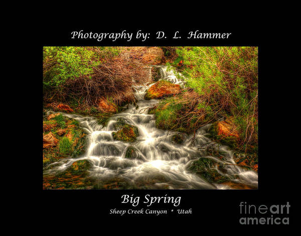 Sheep Creek Canyon Art Print featuring the photograph Big Spring by Dennis Hammer
