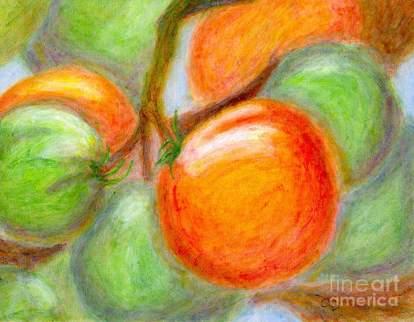 Tomatoes Art Print featuring the painting Burpee Tomatoes by Arlene Babad