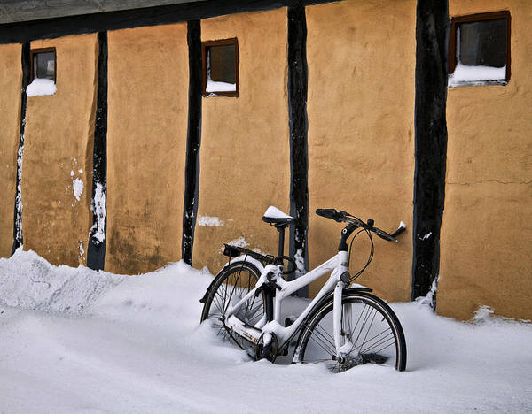 Cold Art Print featuring the photograph Cold Storage by Odd Jeppesen