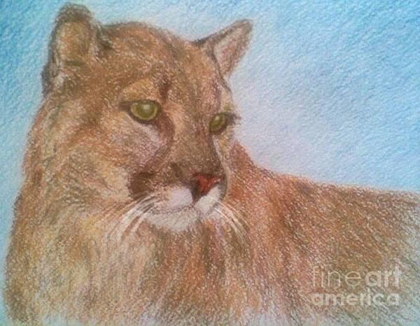 Deer Tiger Soft Pastel Drawing Paper Wild Cat Art Print featuring the drawing Deer Tiger by Nadi Sabirova