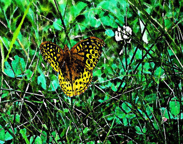 Butterflies Art Print featuring the photograph Great Spangled Fritillary Ins 49 by G L Sarti
