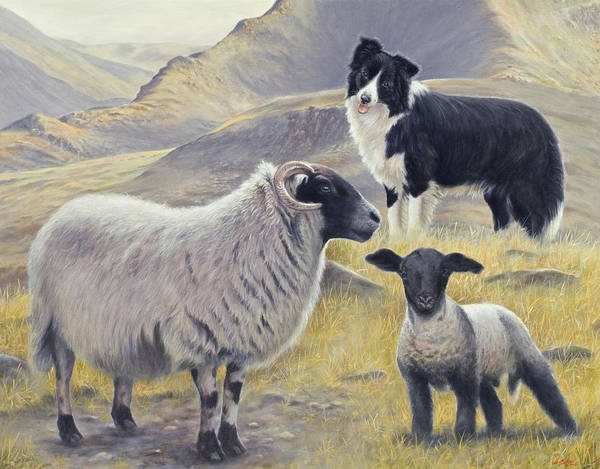 Dog Paintings Art Print featuring the painting Highland Spirit by John Silver