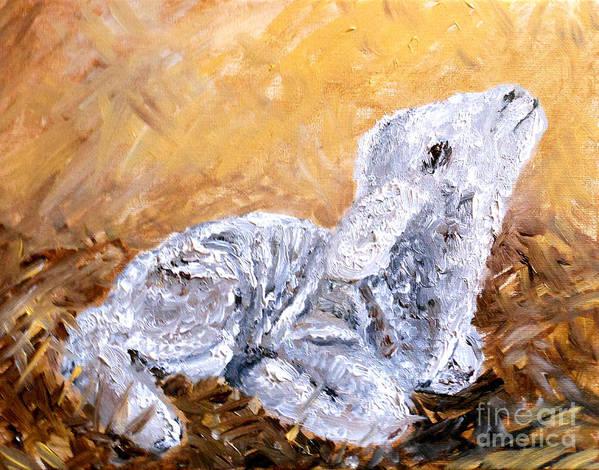 Lamb Art Print featuring the painting Lamb by Amanda Dinan