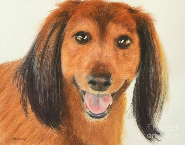 Dachshund Art Print featuring the painting Long Haired Dachshund by Kate Sumners