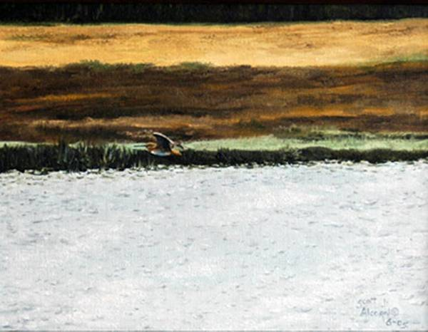 Wildlife Art Print featuring the painting Over The Marsh by Scott Alcorn