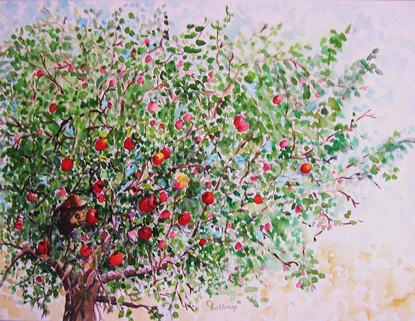 Apples Art Print featuring the painting Apple Tree by Christine Lathrop