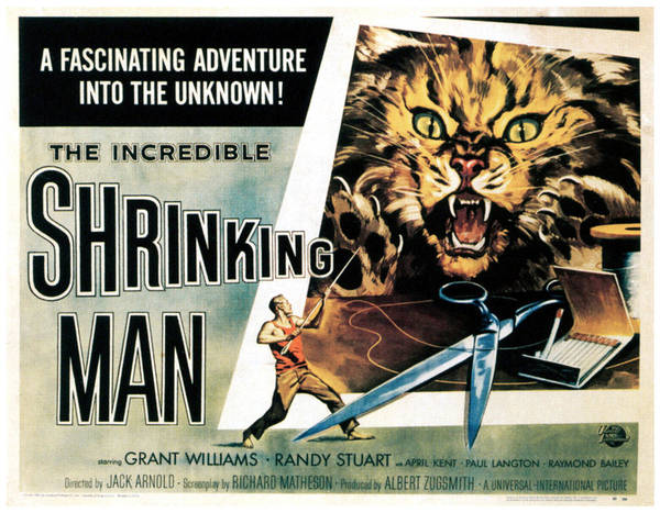 1950s Poster Art Art Print featuring the photograph The Incredible Shrinking Man, 1957 by Everett