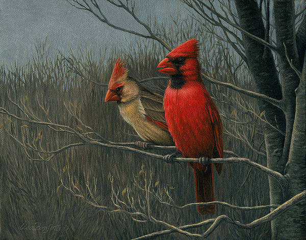 Birds Art Print featuring the painting Cardinals by Lisa Bonforte