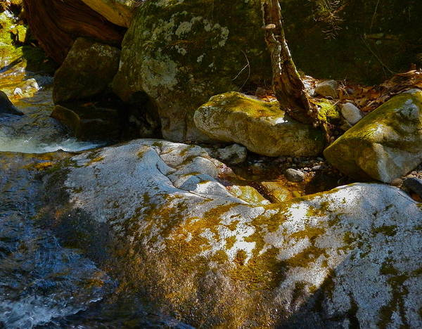 Landscape Art Print featuring the photograph Childs Brook Wz13 by George Ramos