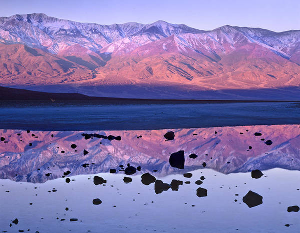 00175897 Art Print featuring the photograph Panamint Range Reflected In Standing by Tim Fitzharris