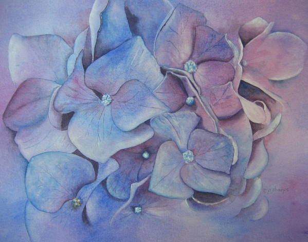 Close Focus Floral Art Print featuring the painting Petals by Patsy Sharpe