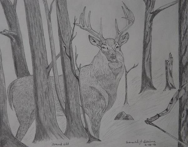 White Tail Deer Art Print featuring the drawing Stand Off by Gerald Strine