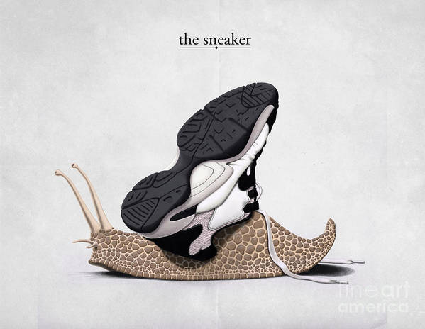 Snail Art Print featuring the drawing The Sneaker by Rob Snow