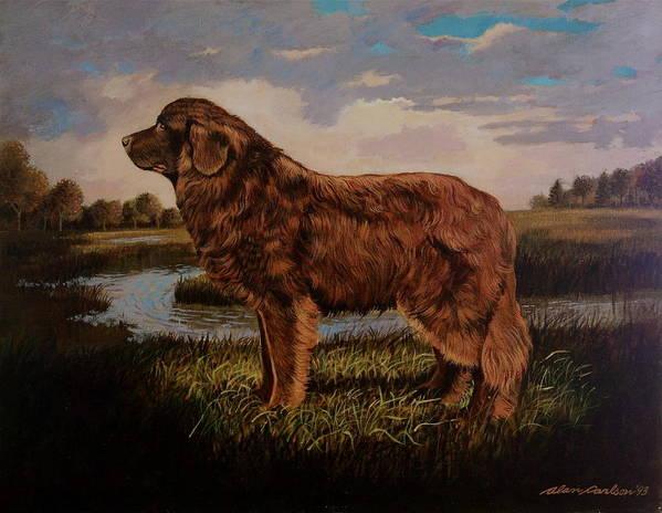 Newfoundland Water Dog Life Saving . Art Print featuring the painting Beautiful Bear-like Friend. by Alan Carlson