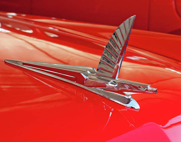 1954 Ford Crestline Art Print featuring the photograph 1954 Ford Cresline Sunliner Hood Ornament 2 by Jill Reger