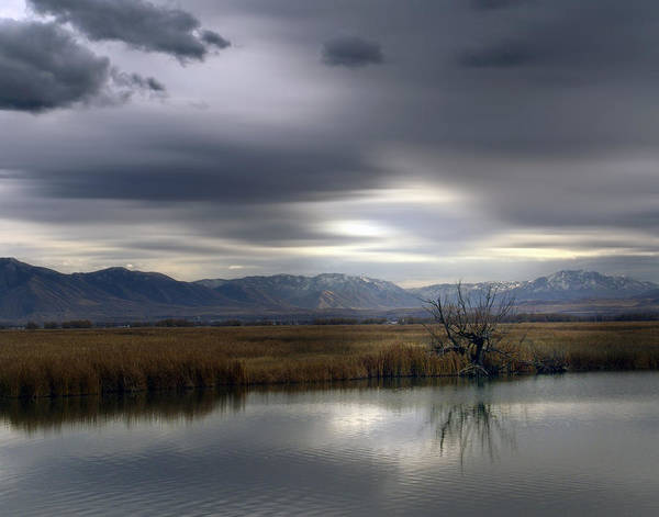 River Art Print featuring the photograph A Darkening Day by David Sidwell
