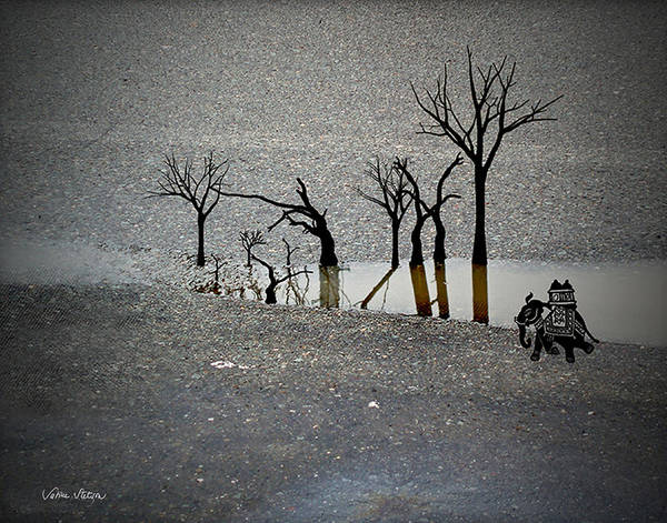 Rain Art Print featuring the digital art Asphalt Oasis by Sabine Stetson