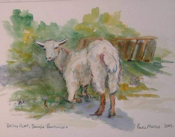 Billy Goat Art Print featuring the painting Billy Goat by Ruth Mabee