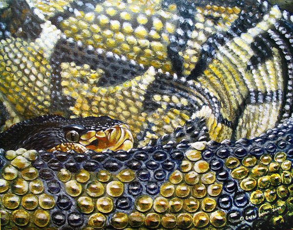 Snake Art Print featuring the painting Deadly Details by Cara Bevan