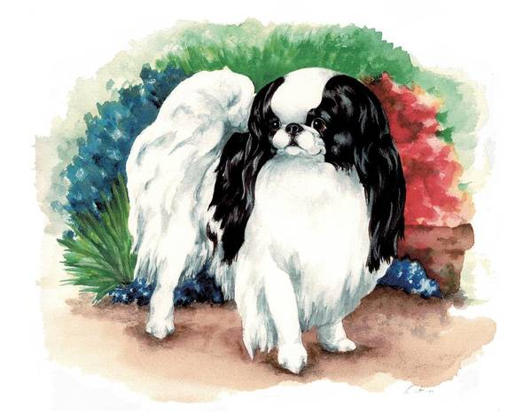 Japanese Chin Art Print featuring the painting Garden Chin by Kathleen Sepulveda
