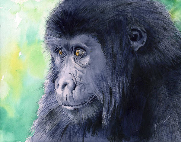 Gorilla Art Print featuring the painting Gorilla by Galen Hazelhofer