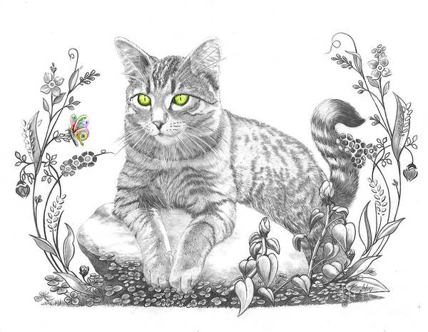 Cat Art Print featuring the drawing House Cat by Murphy Elliott