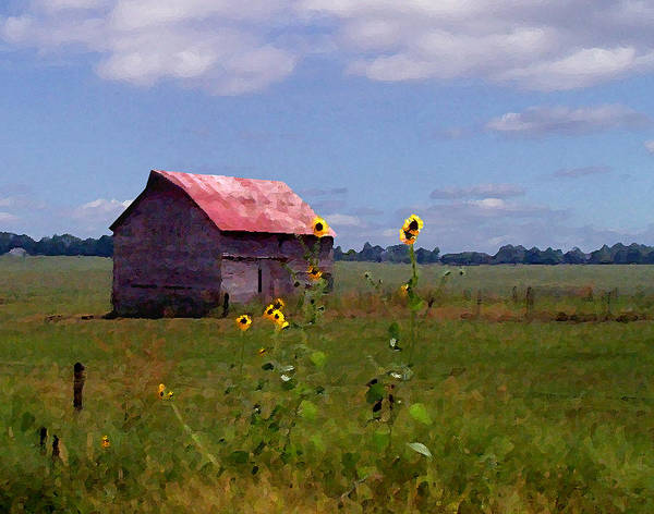 Landscape Art Print featuring the photograph Kansas Landscape by Steve Karol