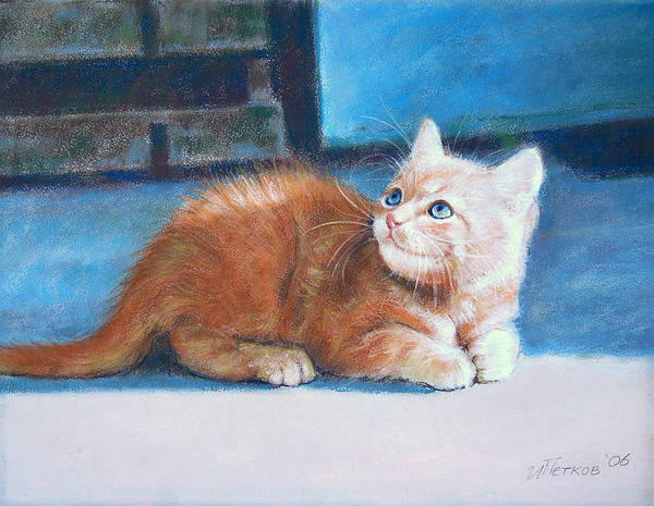 Cats Art Print featuring the pastel Kitten by Iliyan Bozhanov