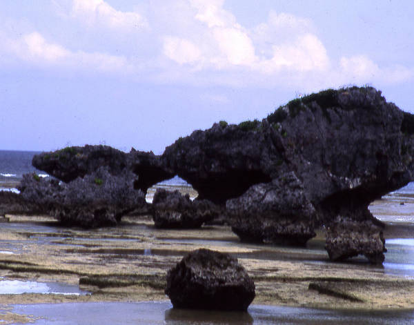Okinawa Art Print featuring the photograph Okinawa Beach 2 by Curtis J Neeley Jr