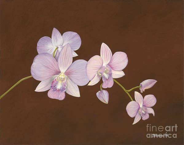 Orchid Art Print featuring the painting Pink Orchids by Shawn Stallings