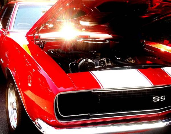 Auto Art Print featuring the photograph Redss by V Rodriguez