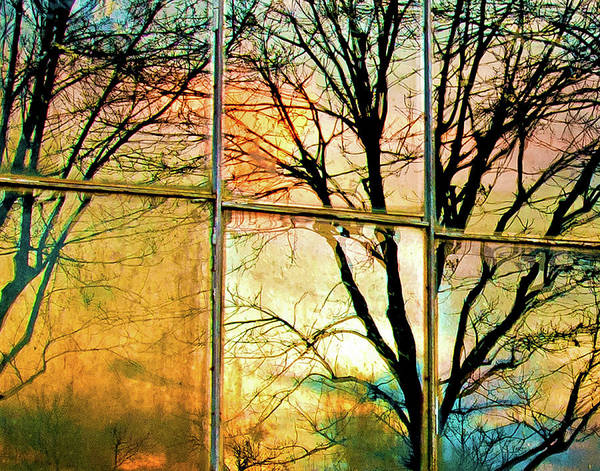 Window Art Print featuring the photograph Reflections by Ron McGinnis