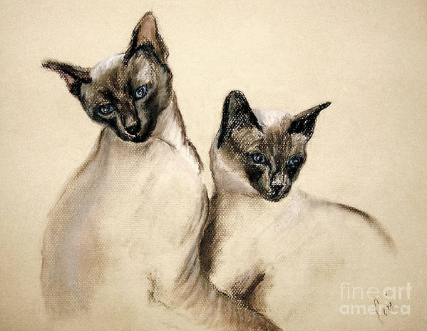 Cat Art Print featuring the drawing Sibling Love by Cori Solomon