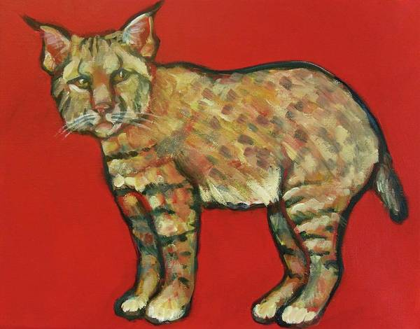 Bobcat Print featuring the painting Smug Bobcat by Carol Suzanne Niebuhr