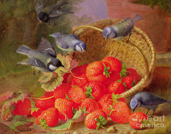 Still Art Print featuring the painting Still Life With Strawberries And Bluetits by Eloise Harriet Stannard