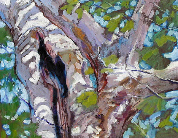 Tree Art Print featuring the painting Sunlight On Sycamore by John Lautermilch